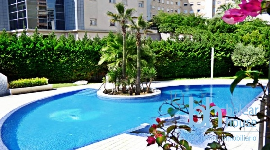 Spacious quality apartment in perfectly convenient Palma location